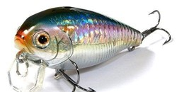Immagine di LUCKY CRAFT MOONSAULT CB-001 AMERICAN SHAD