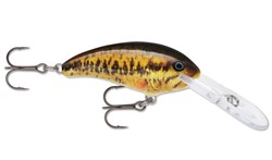 Immagine di RAPALA SHAD DANCER SBL
