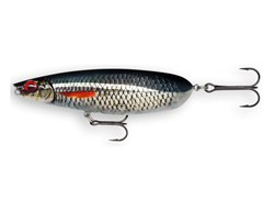 Picture of RAPALA X-RAP SCOOP LIVE ROACH